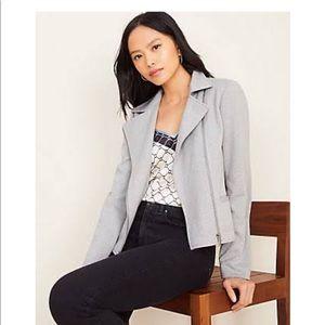 Herringbone Knit Moto Jacket